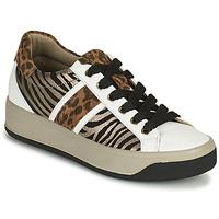 Skor Dam Sneakers IgI&CO DONNA AVA Vit / Brun