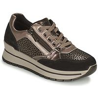 Skor Dam Sneakers IgI&CO DONNA ANISIA Silver / Svart