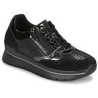 Skor Dam Sneakers IgI&CO DONNA ANISIA Svart