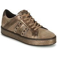 Skor Dam Sneakers Geox LEELU Brun / Guldfärgad