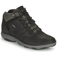 Skor Herr Boots Geox NEBULA Svart