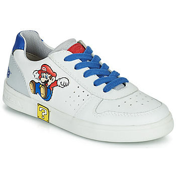 Skor Pojkar Sneakers Geox DJROCK Vit / Blå