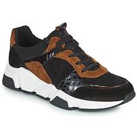 Skor Dam Sneakers Regard KENO Svart / Brun