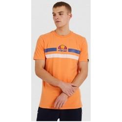 textil Herr T-shirts Ellesse CAMISETA CORTA HOMBRE  SHI09758 Orange