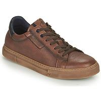 Skor Herr Sneakers Fluchos NIKO Brun