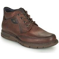 Skor Herr Boots Fluchos CELTIC Brun