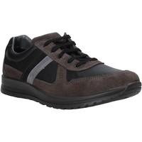 Skor Herr Sneakers Melluso U15432E Grå