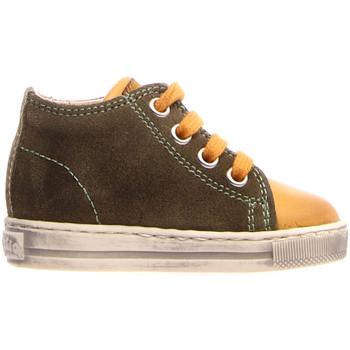 Skor Barn Höga sneakers Falcotto 2014600 12 Grön