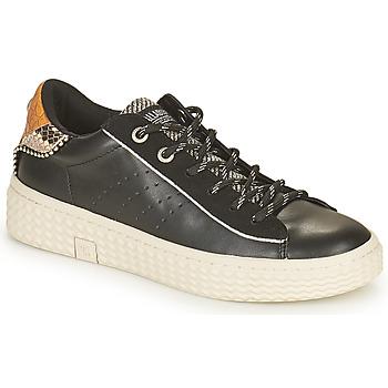 Skor Dam Sneakers Palladium Manufacture TEMPO 04 SYN Svart