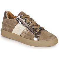 Skor Dam Sneakers Mam'Zelle AUBER Beige
