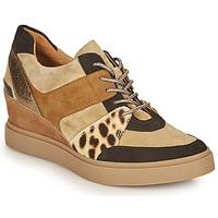 Skor Dam Sneakers Mam'Zelle PERRY Beige / Svart / Leopard
