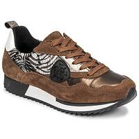 Skor Dam Sneakers Philippe Morvan ROXA Brun / Svart