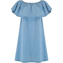 textil Dam Korta klänningar Animal  Chambray blå