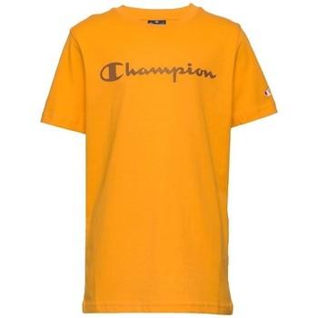 textil Pojkar T-shirts Champion  Flerfärgad