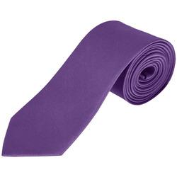 textil Slipsar och accessoarer Sols GARNER Morado Oscuro Violeta
