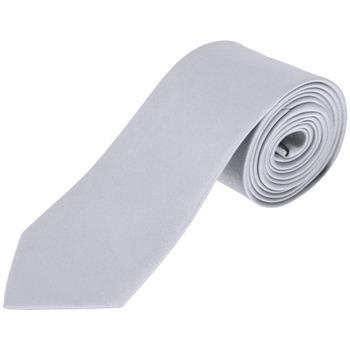 textil Slipsar och accessoarer Sols GARNER Silver Plata Plata