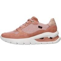 Skor Dam Sneakers CallagHan 45800 WHITE