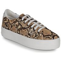 Skor Dam Sneakers No Name PLATO M Brun