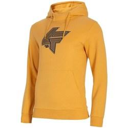 textil Herr Sweatshirts 4F BLM010 Orange