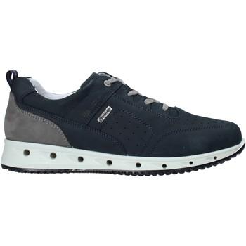 Skor Herr Sneakers IgI&CO 7121000 Blå