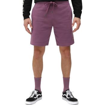 textil Herr Shorts / Bermudas Dickies DK0A4XAYB651 Violett