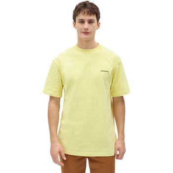textil Herr T-shirts Dickies DK0A4X9OB541 Gul