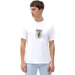 textil Herr T-shirts Dickies DK0A4X9IWHX1 Vit