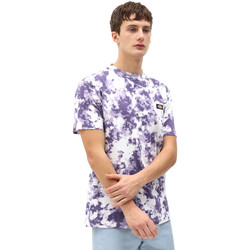 textil Herr T-shirts Dickies DK0A4X9PB651 Violett