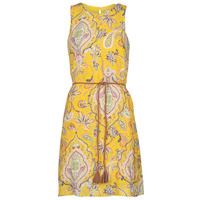 textil Dam Korta klänningar Desigual ADRIANA Flerfärgad