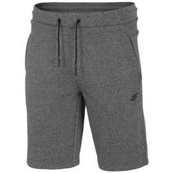 textil Herr Shorts / Bermudas 4F SKMD014 Gråa
