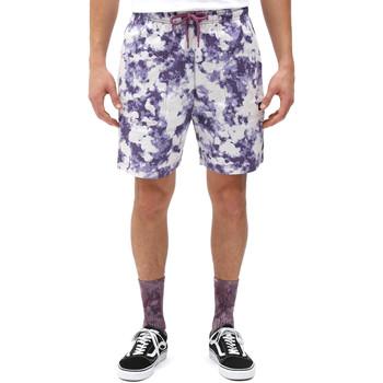 textil Herr Shorts / Bermudas Dickies DK0A4XAZB651 Vit