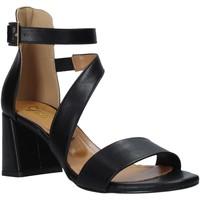 Skor Dam Sandaler Grace Shoes 380034 Svart