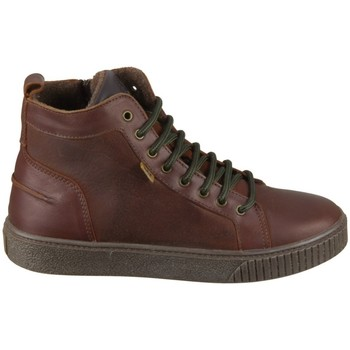 Skor Barn Höga sneakers Bisgaard 618062201322 Bruna