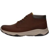 Skor Herr Höga sneakers IgI&CO 8119511 BROWN