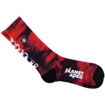 Accessoarer Herr Strumpor Element Pota skate socks Röd