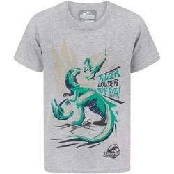 textil Pojkar T-shirts Jurassic World  Grått