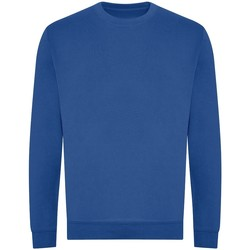 textil Herr Sweatshirts Awdis JH230 Kunglig blå