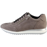 Skor Dam Sneakers Arnaldo Toscani  Rosy Brown