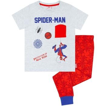 textil Pojkar Pyjamas/nattlinne Spiderman  Grå/Röd