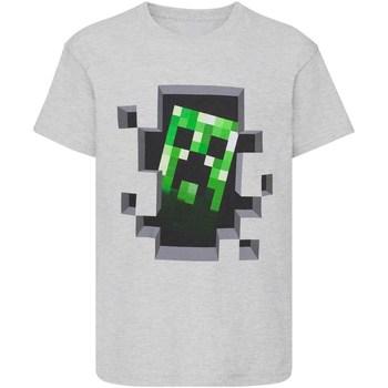 textil Pojkar T-shirts Minecraft  Grått