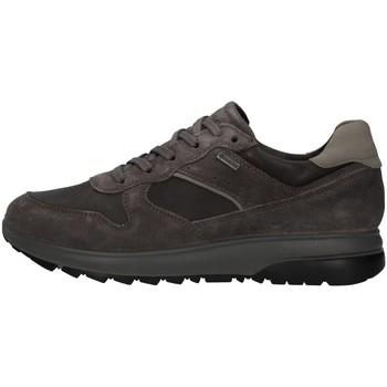 Skor Herr Sneakers IgI&CO 8132611 ANTHRACITE
