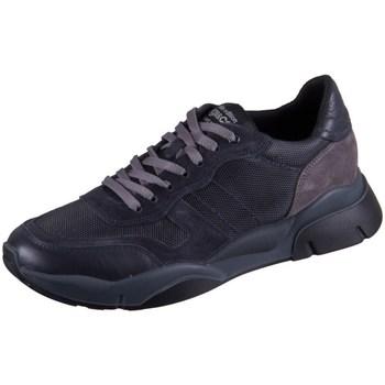 Skor Herr Sneakers IgI&CO Uomo Sirio Svarta