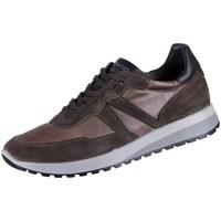 Skor Herr Sneakers IgI&CO Uomo Saro Bruna