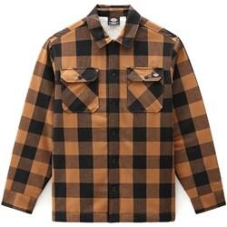 textil Herr Långärmade skjortor Dickies DK0A4XGRBD01 Brun