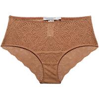 Underkläder Dam Trosor Underprotection HD2032 CLY Brun