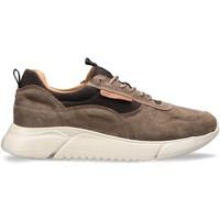 Skor Herr Sneakers Docksteps DSM000100 Brun