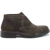 Skor Herr Boots IgI&CO 8100444 Brun