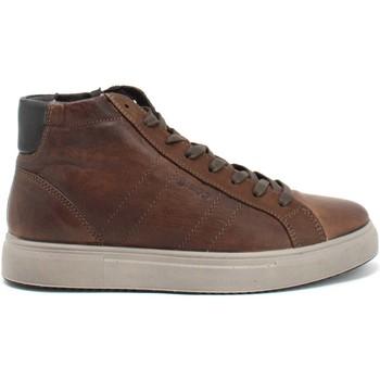 Skor Herr Höga sneakers IgI&CO 8126833 Brun