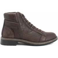 Skor Herr Boots IgI&CO 8106011 Brun
