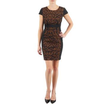 textil Dam Korta klänningar Manoukian EMMA Svart / Leopard